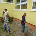 grundschule-bloensdorf-ag-schulgarten (5)